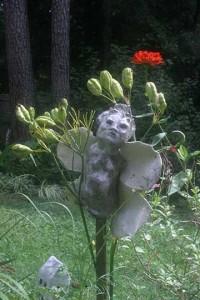 garden harpylillypod